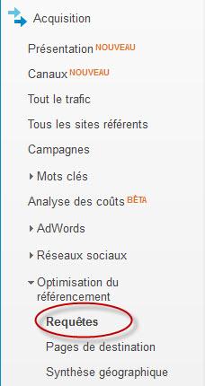 Analytics - Rapport de requetes