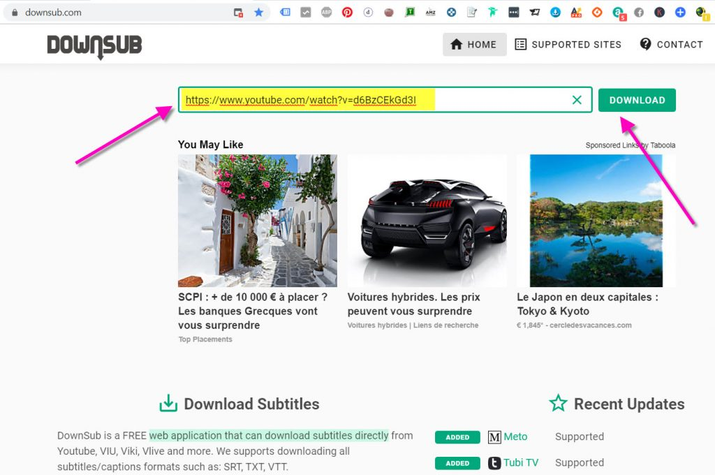 downsub.com pour télécharger des sous titres