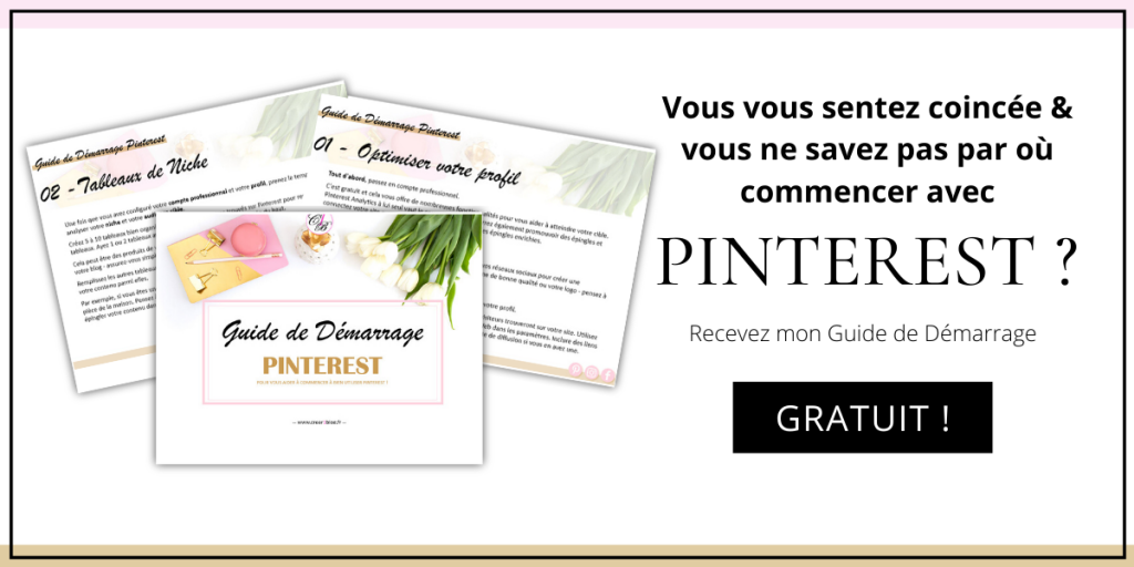 ebook pinterest pdf gratuit