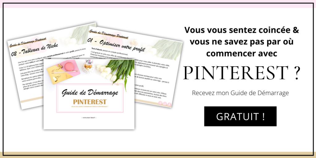 ebook pinterest pdf gratuit